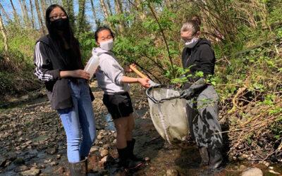 Rewilding Still Creek: youth-led habitat restoration